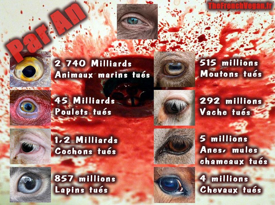 Nombre d'animaux tues par an